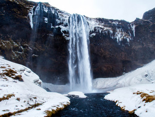 Cold Shower Warm Start : 4 Reasons to Take the Plunge