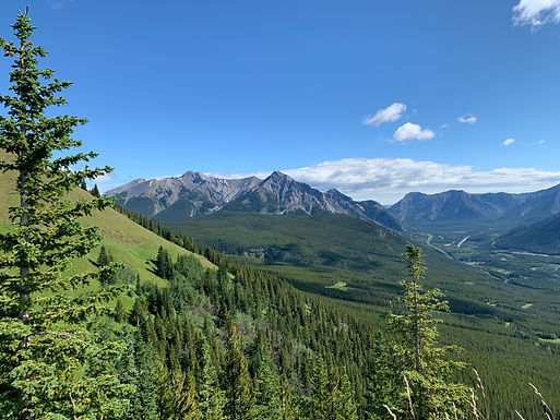 A panoramic picture taken from the shoulder of Mt. Allan. It's a beautiful summer day, and the Front Range can be easily seen across the valley.