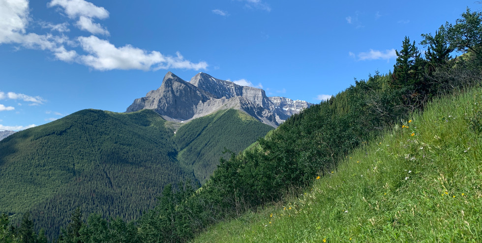 Mt. Kidd