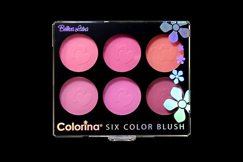COLORINA 6 COLOR MATTE BLUSH #2