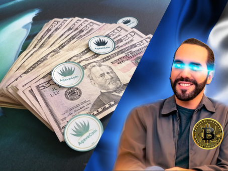 AgaveCoin podría llegar a $ 1.00 USD en 2022