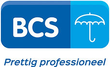 logo BCS.jpg