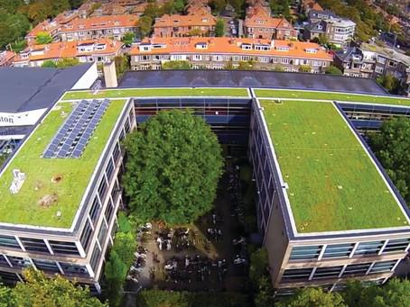 Dé klimaatrobuuste waterbuffer op het dak