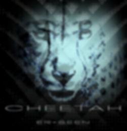 cheetah-6_edited.jpg
