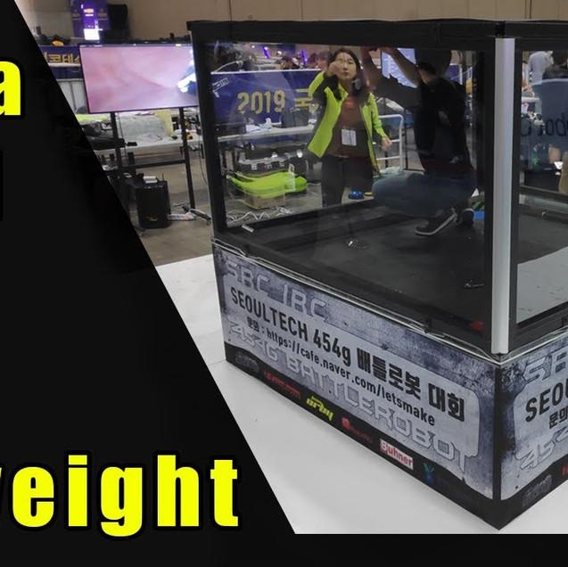 Antweight Arena Build