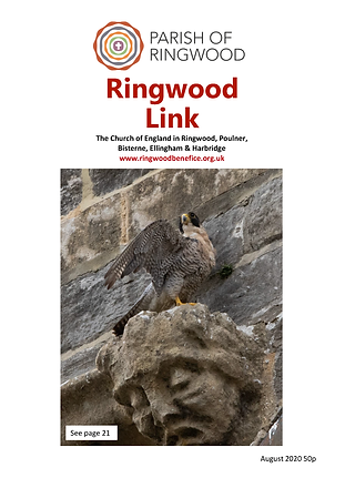 The Link August issue 2020 - Colour_Page