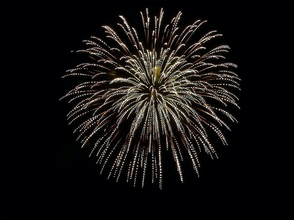 fireworks-1039823_optim.jpg
