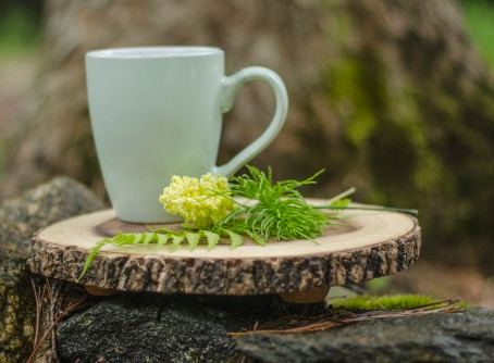 Everything to Know About Herbal Teas