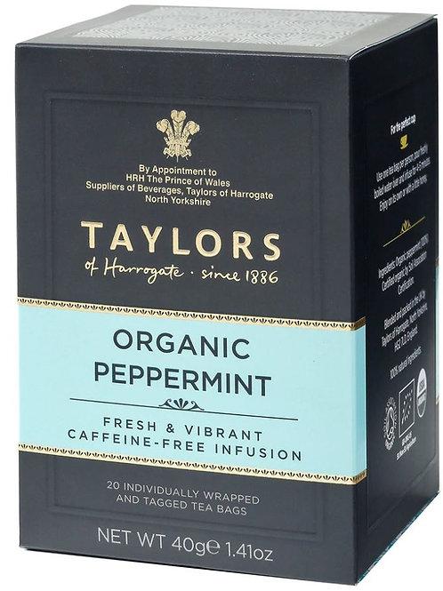 Taylors of Harrogate Organic Peppermint Tea - 20 Count