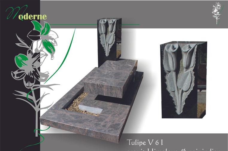 moderne Tulipe V 6 l.jpg