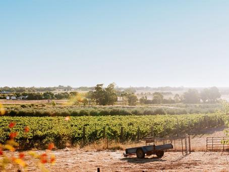 澳大利亞加強酒之都:路斯格蘭 | Rutherglen: Capital of Australia Fortified Wine