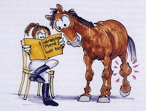 Erste Hilfe für das Pferd