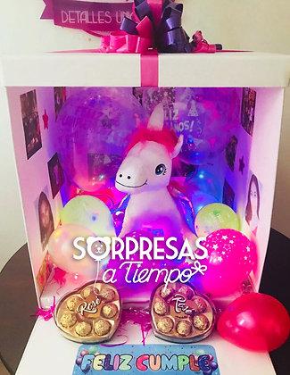 Surprise Box Unicorn (C005)