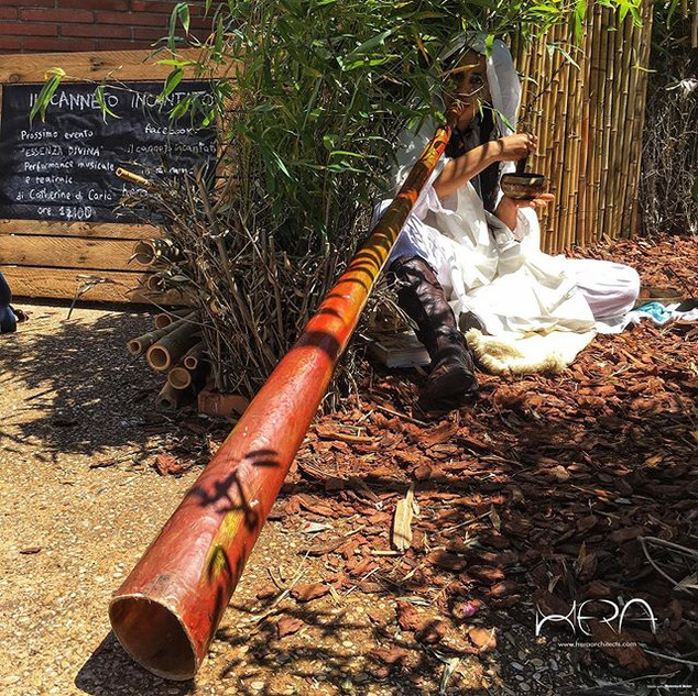 Didgeridoo performance._By Catherine Di