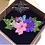Thumbnail: 鮮乾花系列~UV飾物吊咀頸鍊班-B(立體全乾花款式)