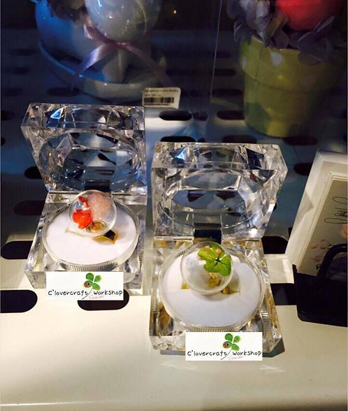 Preserved Flower 保鮮花系列~C-波波戒指及波波耳環班