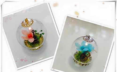 Preserved Flower 保鮮花系列~玻璃吊咀頸鍊班B-(粉藍/香檳色小星花少有款式)