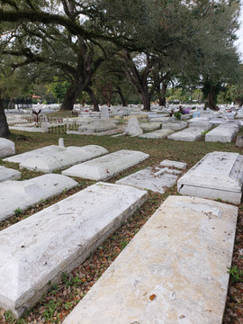 Charlotte Jane Park Memorial Cementery