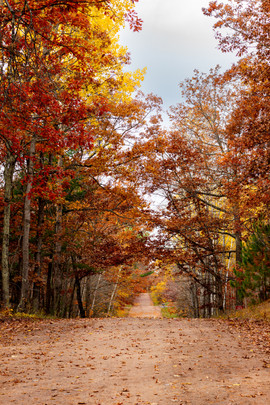 Country Road in Autumn.jpg