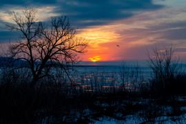 Early Spring Lake Peppin, Minnesota.jpg