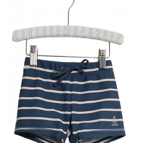 Swim Shorts Eli