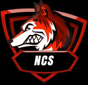 No Cheats Squad - NCS Dfb9c8_853678ceda9e4f1492b463ddff103f20~mv2