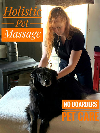 NB Holistic Pet Massage Picture_edited.j