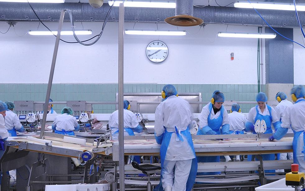 food-safety-hygiene-manufacturing.jpg