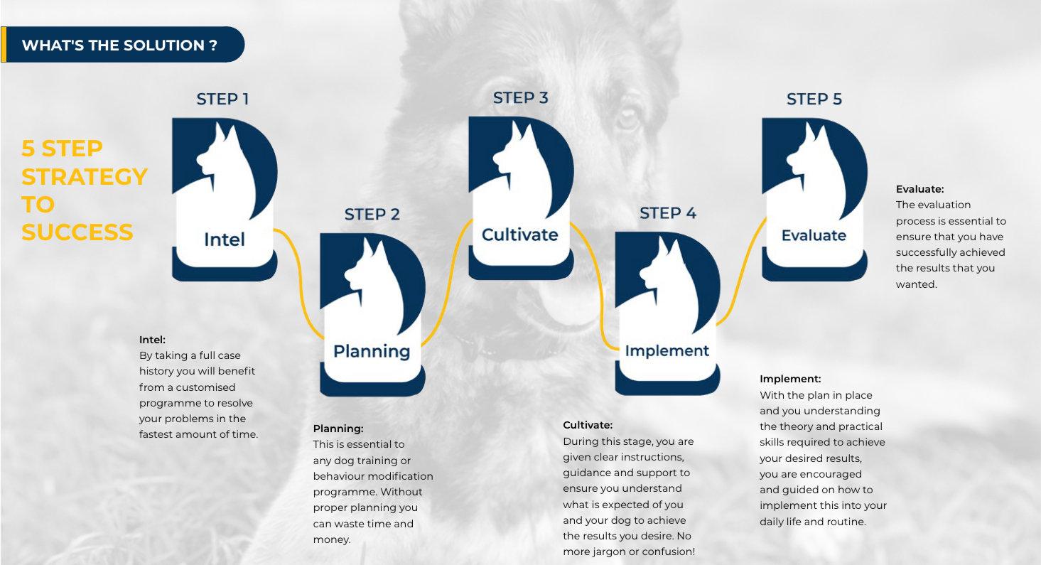 5 step brochure.jpg