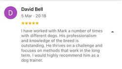 Dave B review