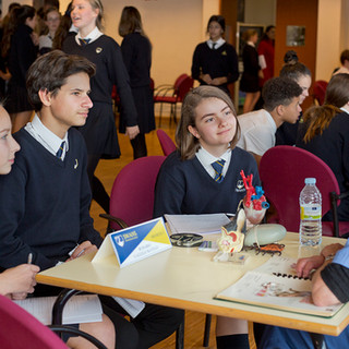 Swans Secondary School. Careers day.