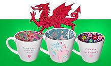 Welsh Mugs.jpg