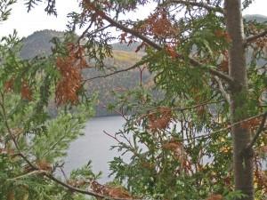 Saguenay Fjord 3