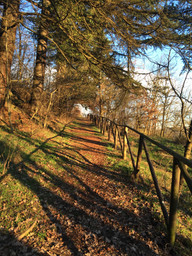 Giardinaggio e Visite guidate nell'Oasi sabato 18 - domenica 19 febbraio