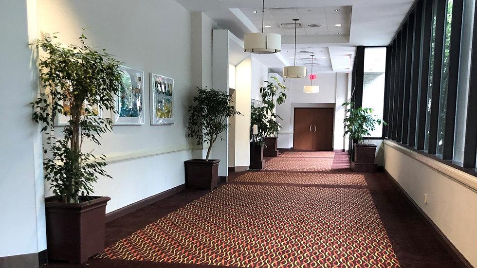 HI hallway_edited.jpg