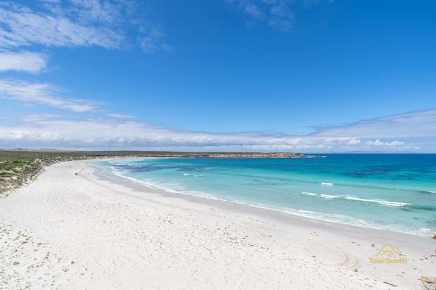 Fishery Bay - Tour South