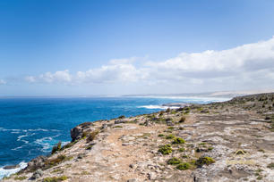 Lincoln National Park - Tour South