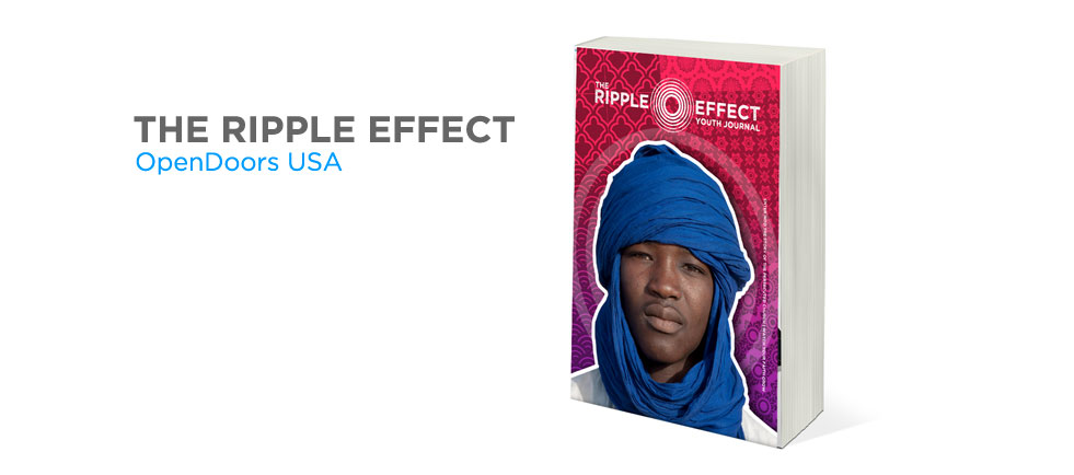 The Ripple Effect Series