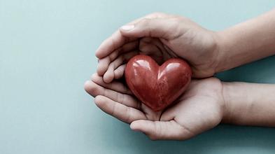 heart in hands photo