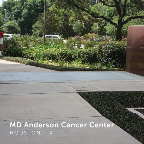 MD Anderson 1.png