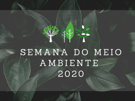 Conservação em foco - Dia Mundial do Meio Ambiente