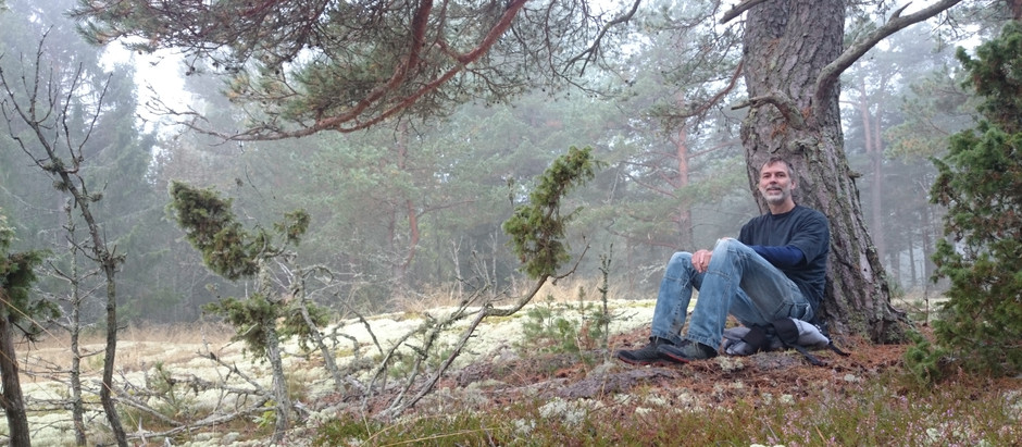I lördags hade vi stressterapi i naturen