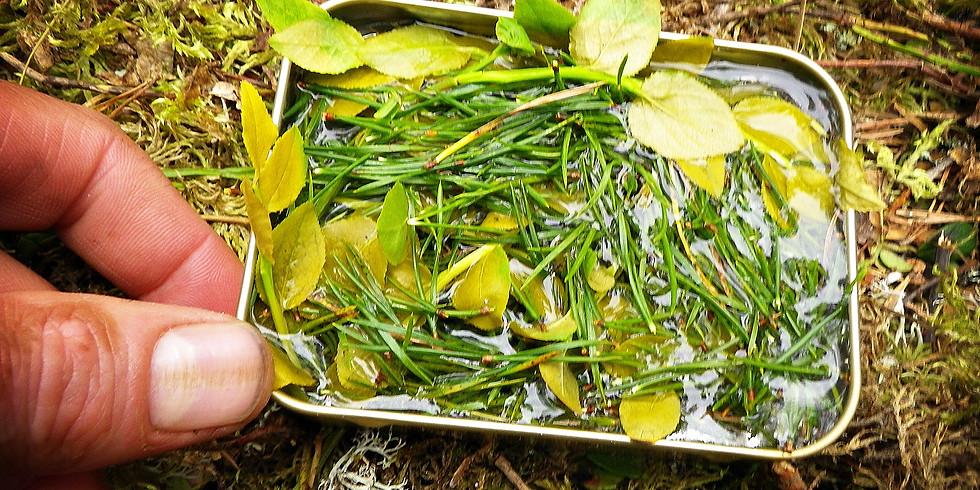 Te plockat direkt från naturen och kokat över eld.