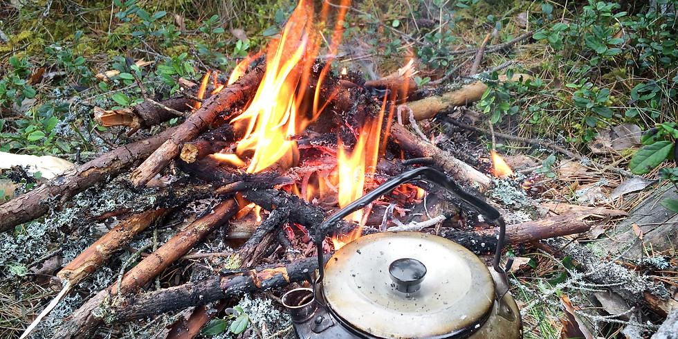 Upptäck naturen med nya ögon – praktiska tips och vägledning i skogen. Träff 1/2.