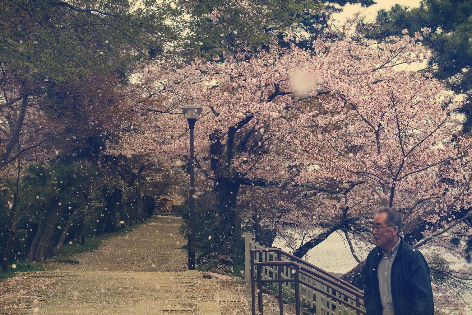 Odawara Japan. 2012