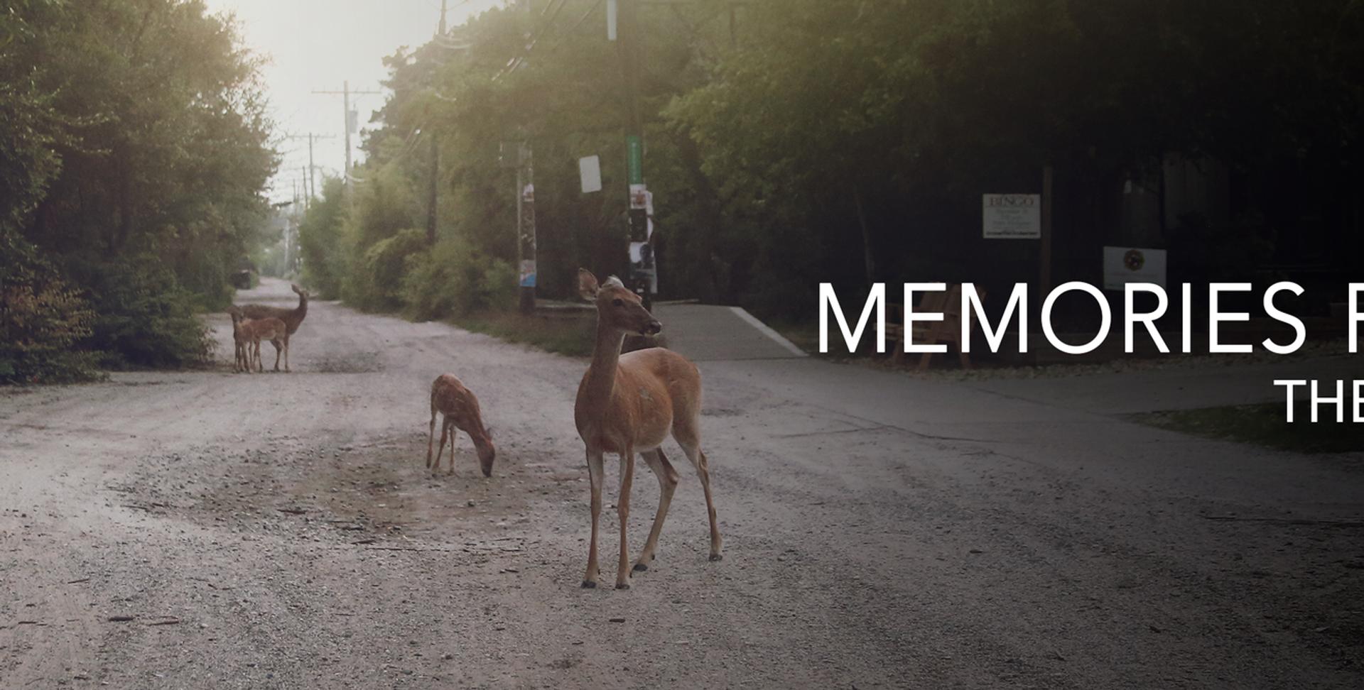 Memories-Portada-V2.png