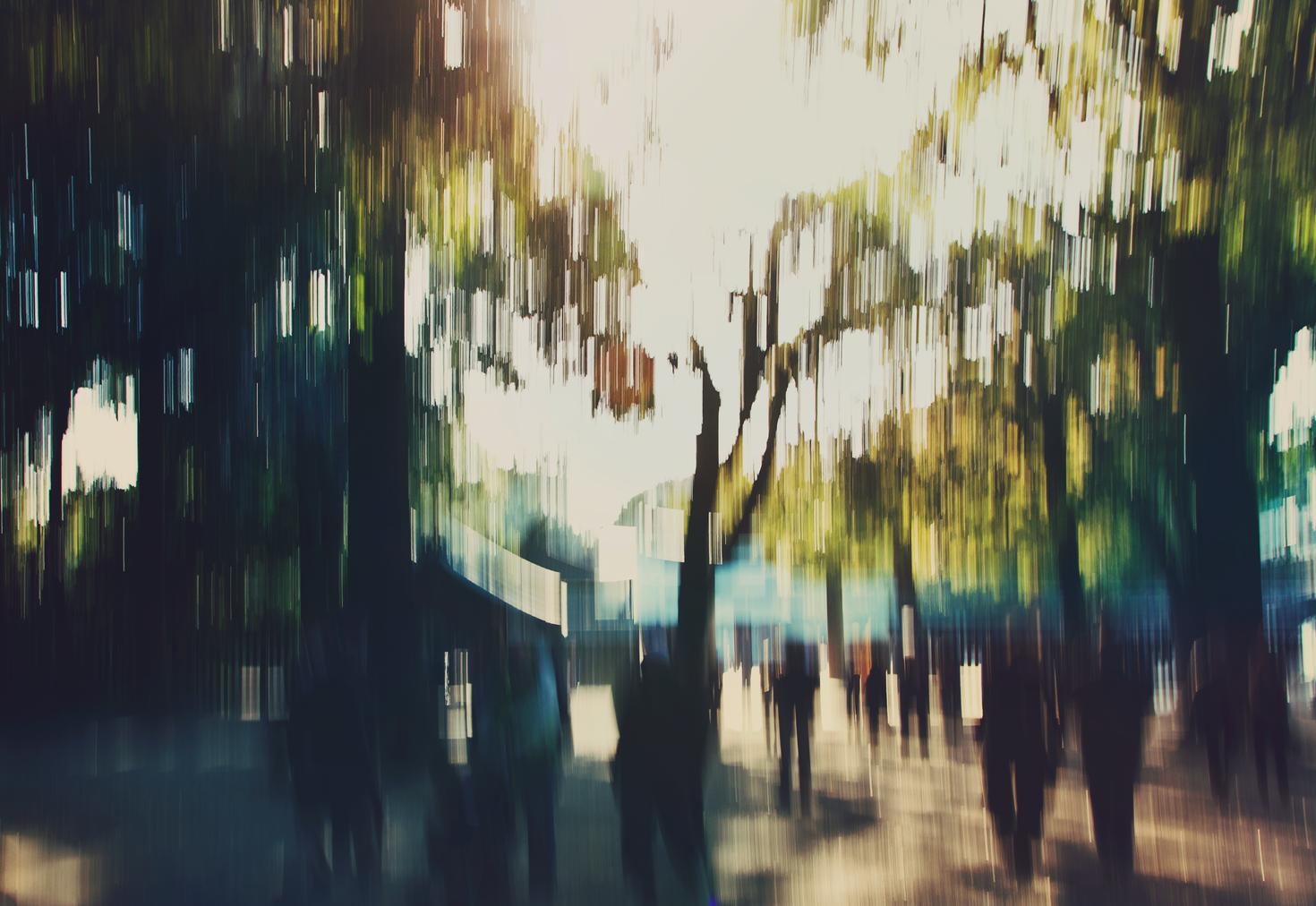 Yoyogi Park, Japan. 2012
