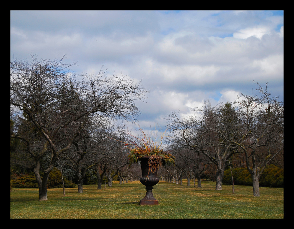 niagra falls garden edited.jpg