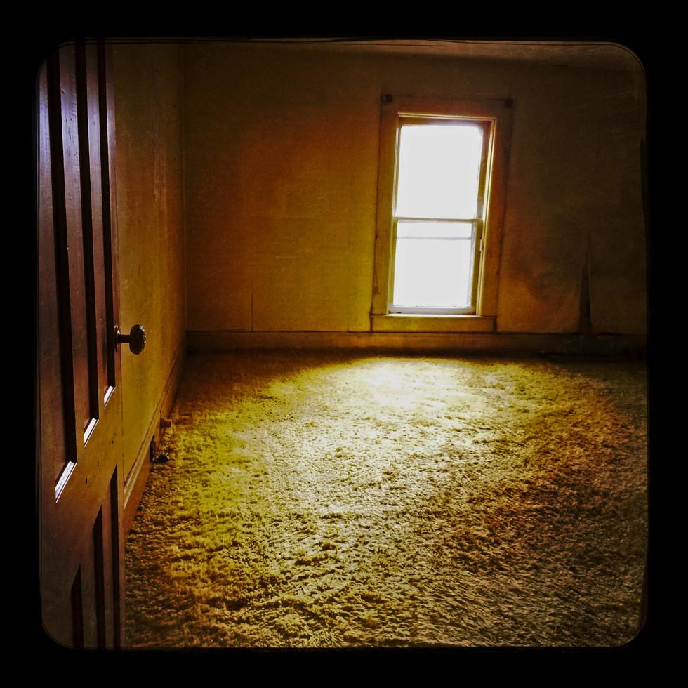 golden carpet montour falls.jpg