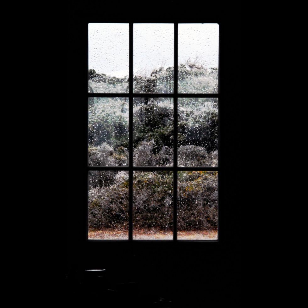 door window.jpg